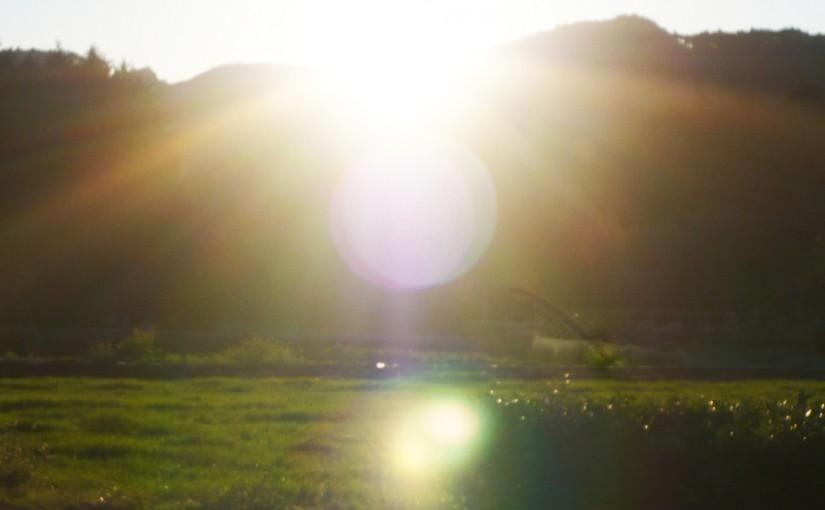 いさどんの七夜物語 – 第七夜 「太陽の導き」
