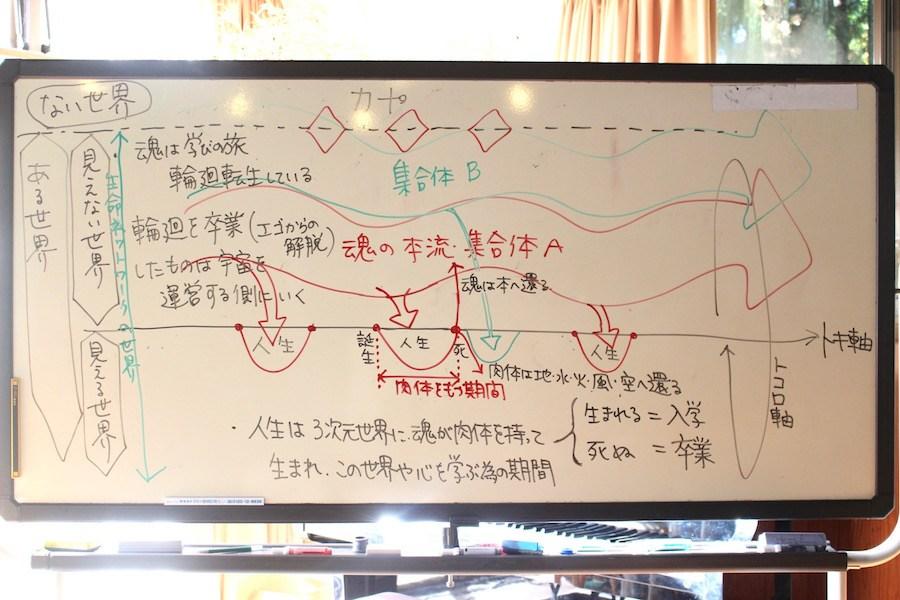 みかちゃんが描いた生命の仕組みの図
